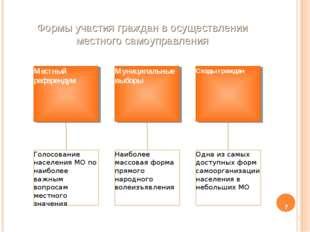 Формы участия граждан в осуществлении местного самоуправления *
