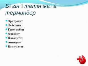 Бүгін өтетін жаңа терминдер Эритроцит Лейкоцит Гемоглобин Фагоцит Фагоцитоз А