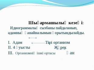 Шығармашылық кезеңі: Идиограммалық сызбаны пайдаланып, адамның қанайналымын
