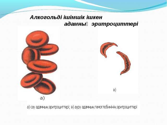 Алкогольді ішімшік ішкен адамның эритроциттері
