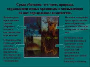 Среда обитания -это часть природы, окружающая живые организмы и оказывающие н