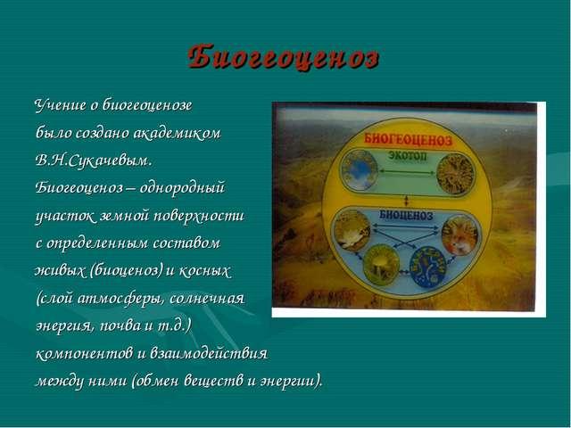 Биогеоценоз Учение о биогеоценозе было создано академиком В.Н.Сукачевым. Биог...