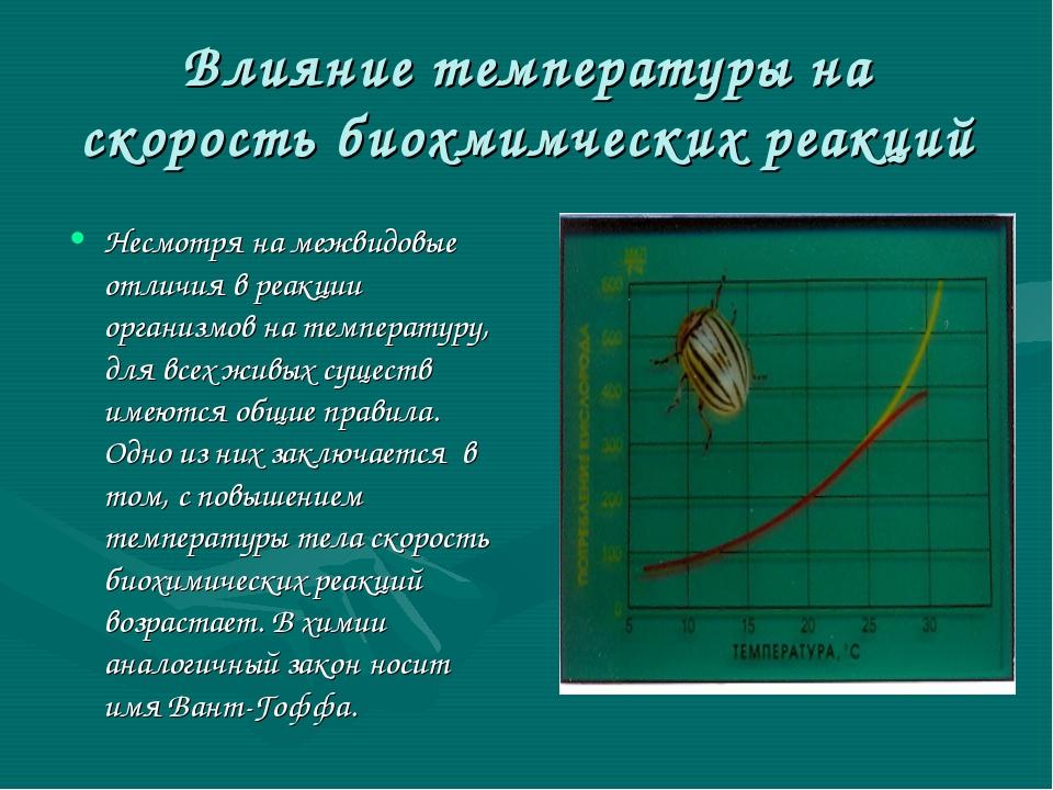 Влияние температуры на скорость биохмимческих реакций Несмотря на межвидовые...
