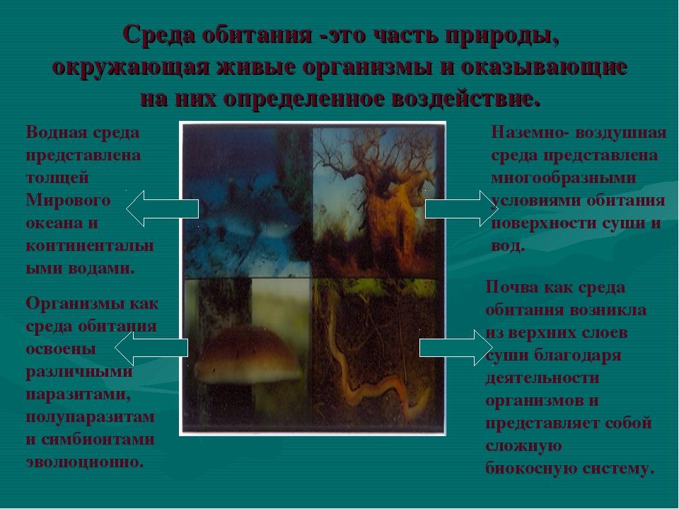 Среда обитания -это часть природы, окружающая живые организмы и оказывающие н...