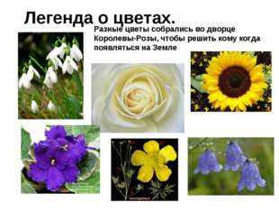 Легенда о цветах. Разные цветы собрались во дворце Королевы-Розы, чтобы решит