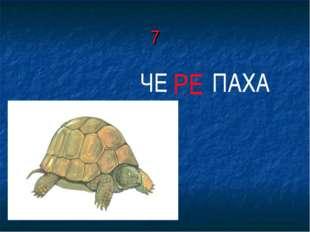 7 ЧЕ РЕ ПАХА