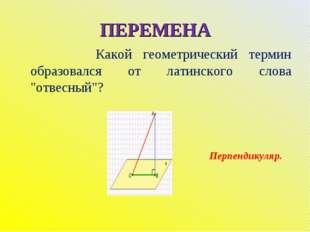 """ПЕРЕМЕНА Какой геометрический термин образовался от латинского слова """"отвесны"""