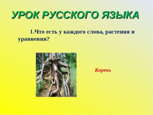 УРОК РУССКОГО ЯЗЫКА 1.Что есть у каждого слова, растения и уравнения? Корень