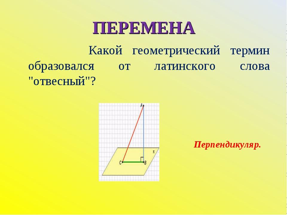 """ПЕРЕМЕНА Какой геометрический термин образовался от латинского слова """"отвесны..."""