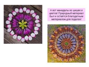 А вот манадалы из шишек и цветов! Природный материал был и остаётся благодатн