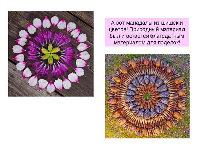 А вот манадалы из шишек и цветов! Природный материал был и остаётся благодатн...