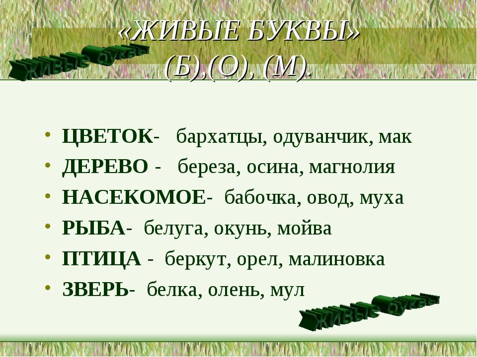 «ЖИВЫЕ БУКВЫ» (Б),(О), (М). ЦВЕТОК- бархатцы, одуванчик, мак ДЕРЕВО - береза,...