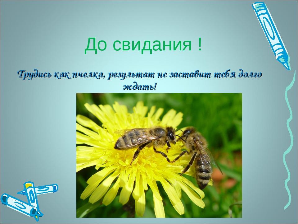 До свидания !  Трудись как пчелка, результат не заставит тебя долго ждать!