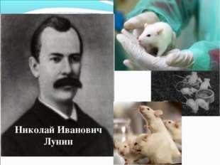 Николай Иванович Лунин