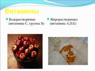Витамины Водорастворимые (витамины С, группы В) Жирорастворимые (витамины А,D