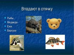 Впадают в спячку Рыбы Медведи Ежи Барсуки