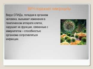 ВИЧ поражает лимфоциты Вирус СПИДа, попадая в организм человека, вызывает изм