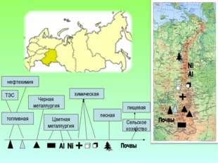 топливная Сельское хозяйство пищевая лесная химическая ТЭС нефтехимия Черная