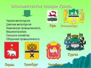 Экономическое «лицо» Урала. Черная металлургия Цветная металлургия Химическая