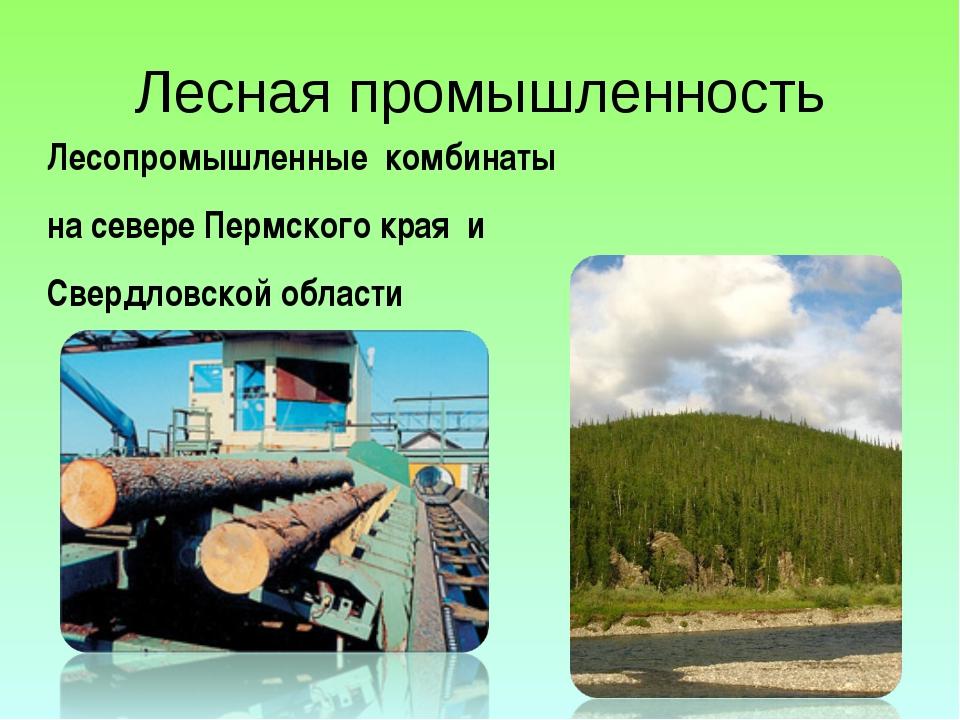 Лесная промышленность Лесопромышленные комбинаты на севере Пермского края и С...
