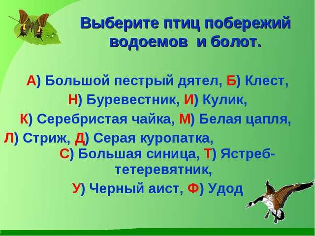 А) Большой пестрый дятел, Б) Клест, Н) Буревестник, И) Кулик, К) Серебристая...