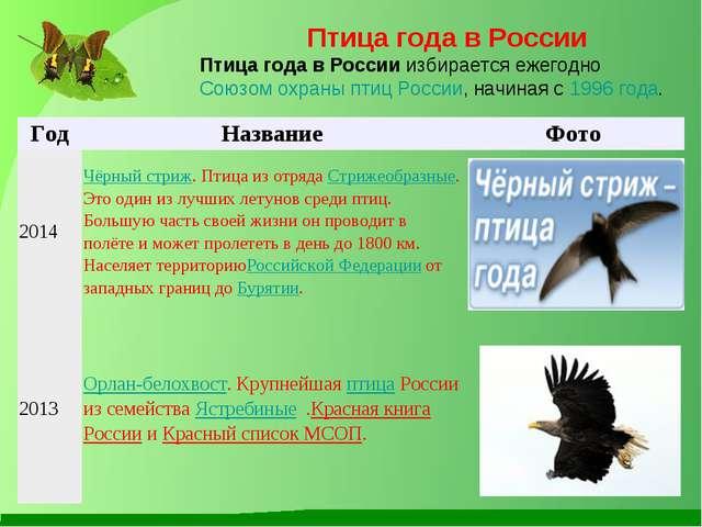 Птица года в России Птица года в Россииизбирается ежегодноСоюзом охраны пти...