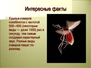 Интересные факты Крылья комаров колеблются с частотой 500—600 (некоторые виды