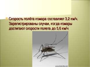Скорость полёта комара составляет 3,2 км/ч. Зарегистрированы случаи, когда ко