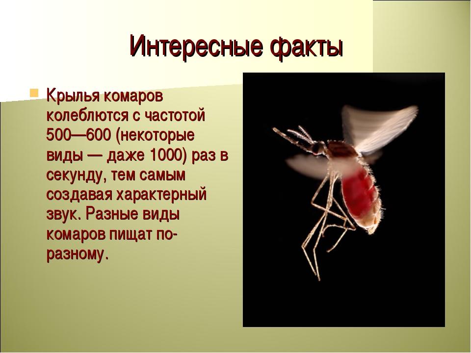Интересные факты Крылья комаров колеблются с частотой 500—600 (некоторые виды...