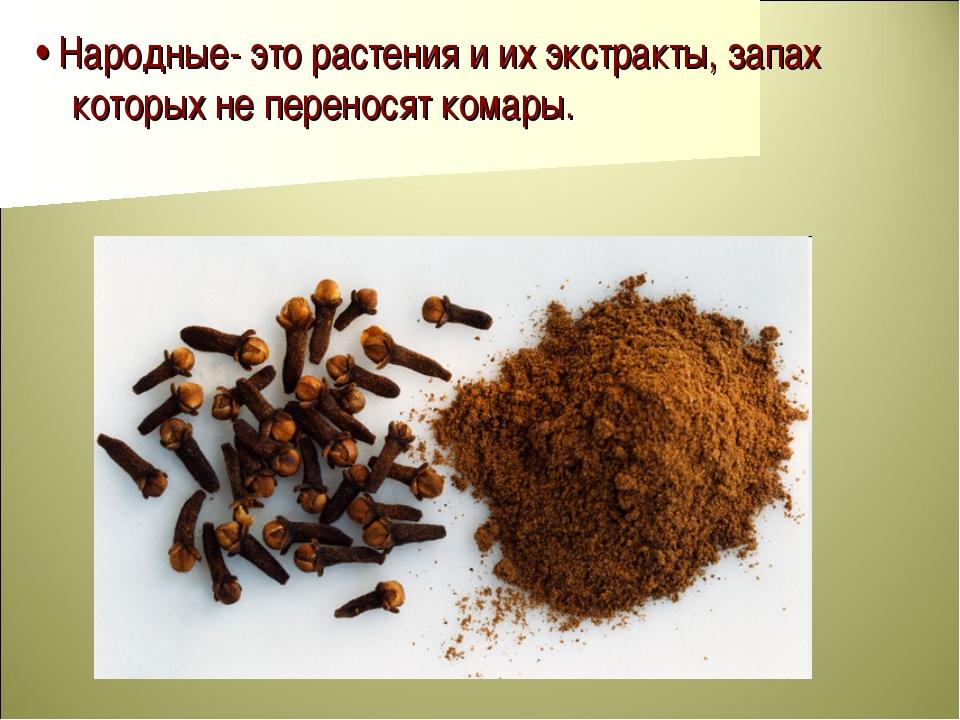 • Народные- это растения и их экстракты, запах которых не переносят комары.