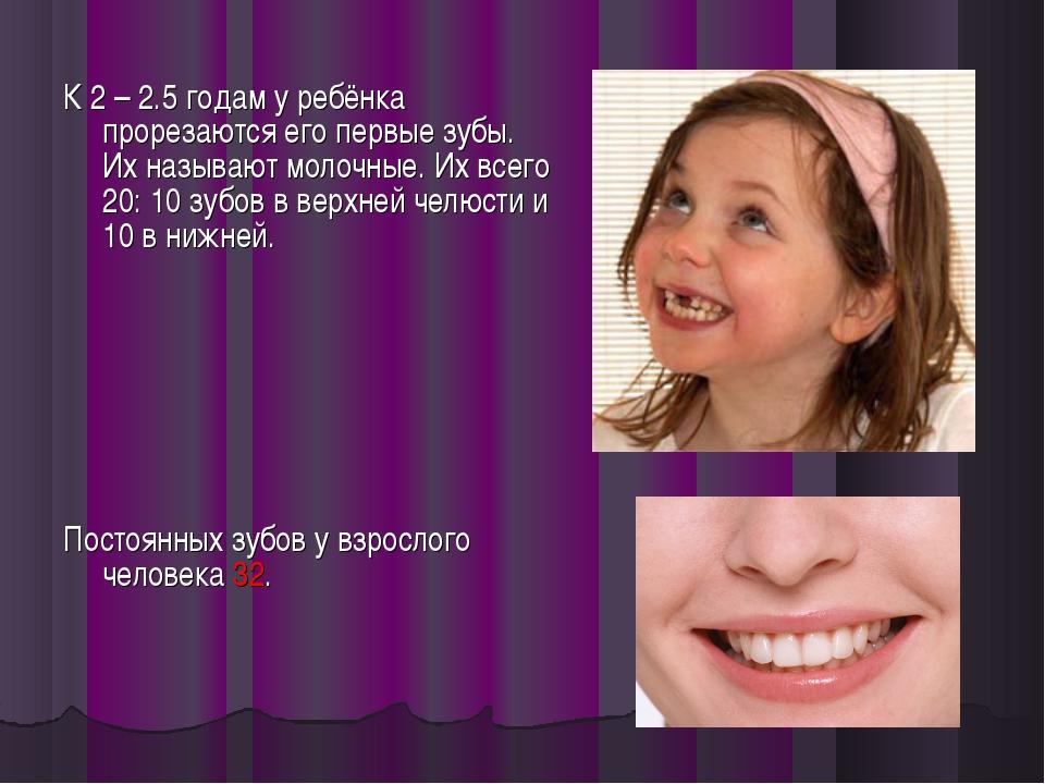 К 2 – 2.5 годам у ребёнка прорезаются его первые зубы. Их называют молочные....
