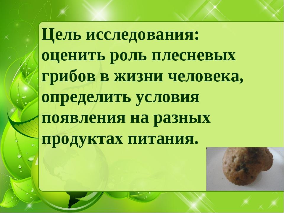 Цель исследования: оценить роль плесневых грибов в жизни человека, определить...