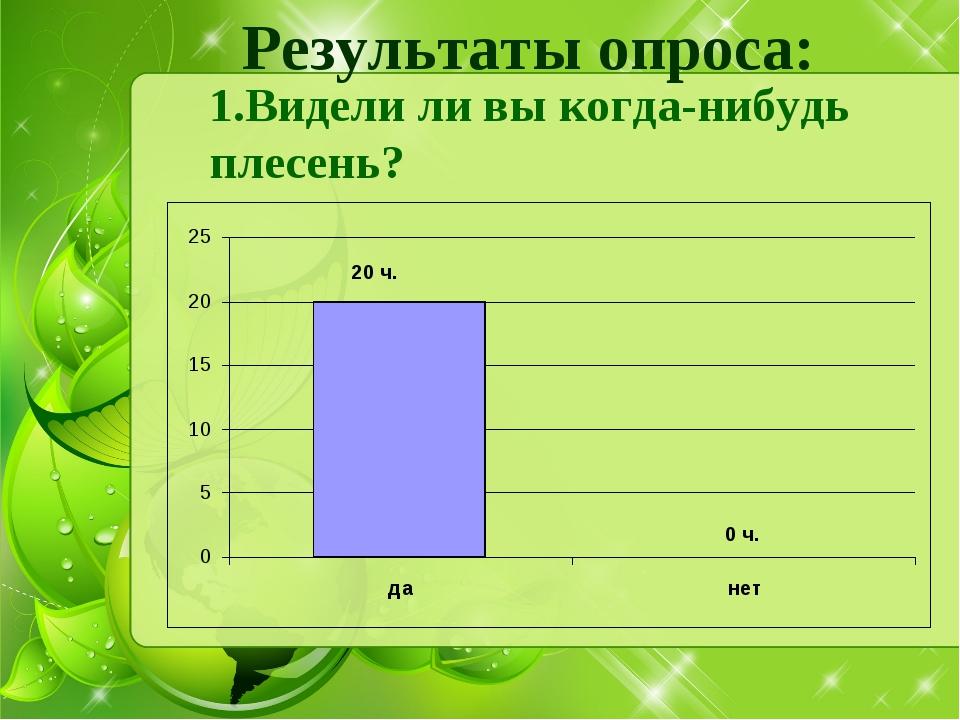Результаты опроса: Видели ли вы когда-нибудь плесень?