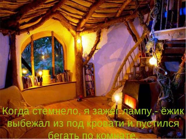 Когда стемнело, я зажёг лампу,- ёжик выбежал из под кровати и пустился бегать...