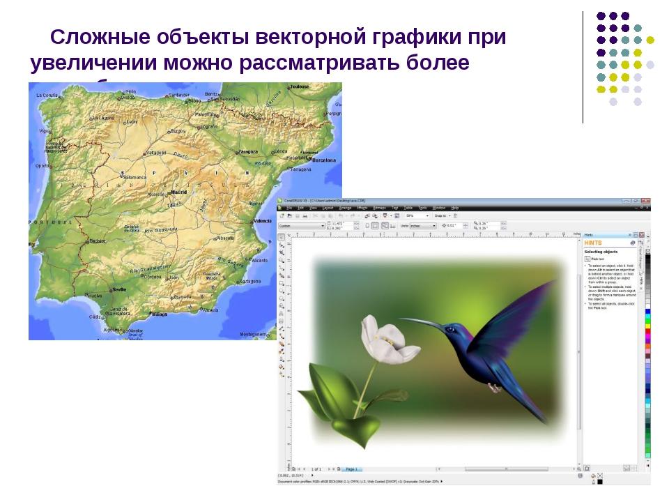 Сложные объекты векторной графики при увеличении можно рассматривать более по...