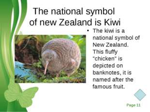 The national symbol of new Zealand is Kiwi The kiwi is a national symbol of N