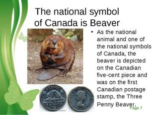 The national symbol of Canada is Beaver As the national animal and one of the