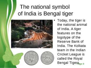 The national symbol of India is Bengal tiger Today, the tiger is the national