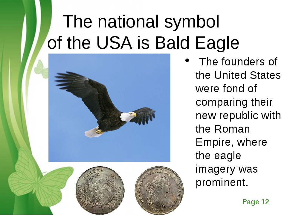 The national symbol of the USA is Bald Eagle The founders of the United State...