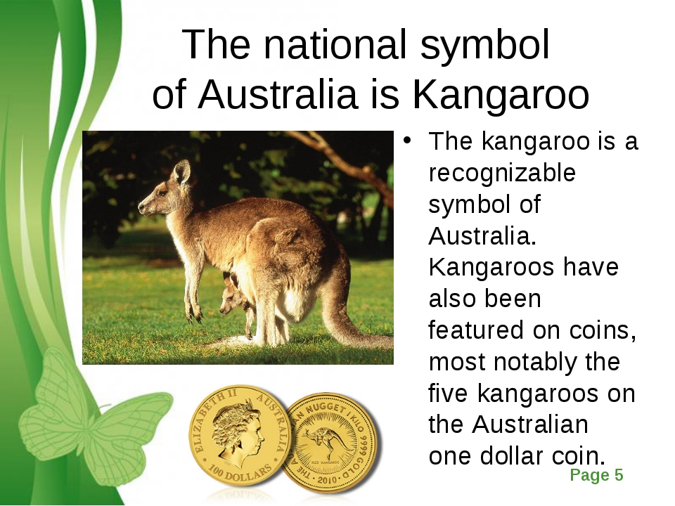 The national symbol of Australia is Kangaroo The kangaroo is a recognizable s...