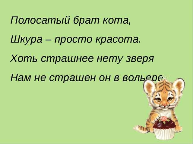 Полосатый брат кота, Шкура – просто красота. Хоть страшнее нету зверя Нам не...
