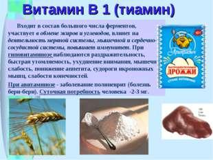 Витамин В 1 (тиамин) Входит в состав большого числа ферментов, участвует в об