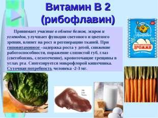Витамин В 2 (рибофлавин) Принимает участие в обмене белков, жиров и углеводов