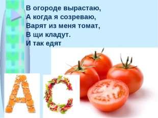 В огороде вырастаю, А когда я созреваю, Варят из меня томат, В щи кладут. И т