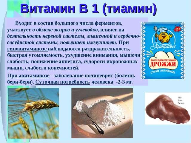 Витамин В 1 (тиамин) Входит в состав большого числа ферментов, участвует в об...