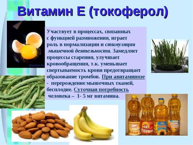 Витамин Е (токоферол) Участвует в процессах, связанных с функцией размножения...