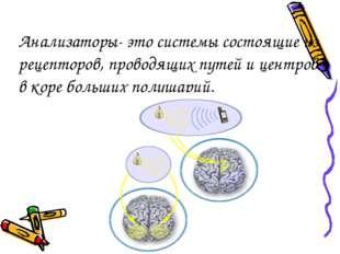 Анализаторы- это системы состоящие из рецепторов, проводящих путей и центров