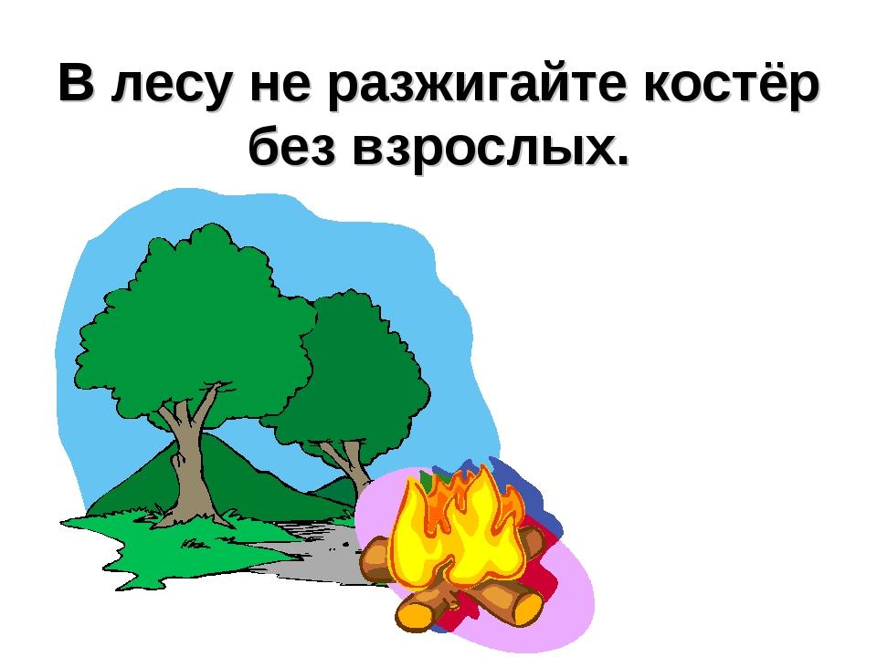 bactefort в казахстане