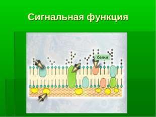 Сигнальная функция