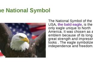The National Symbol The National Symbol of the USA, the bald eagle, is the on